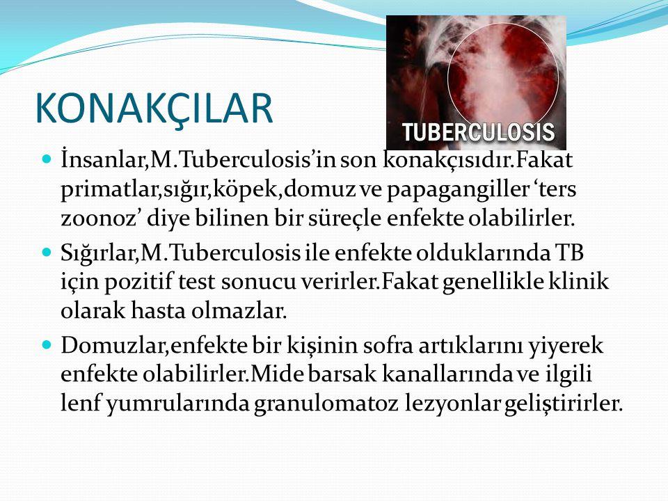 KONAKÇILAR  İnsanlar,M.Tuberculosis'in son konakçısıdır.Fakat primatlar,sığır,köpek,domuz ve papagangiller 'ters zoonoz' diye bilinen bir süreçle enfekte olabilirler.