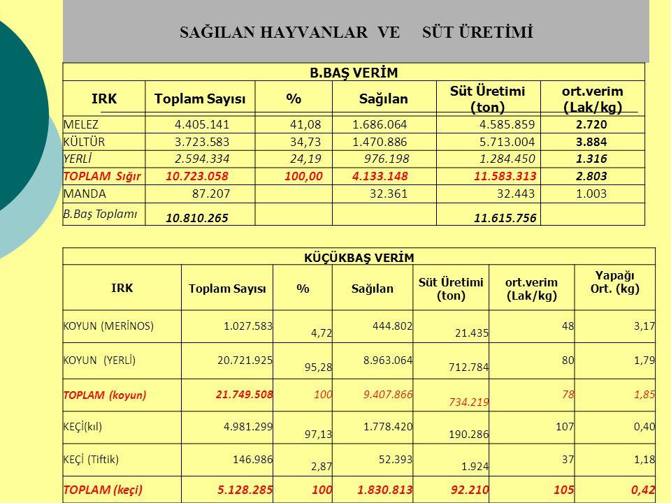 SAĞILAN HAYVANLAR VE SÜT ÜRETİMİ B.BAŞ VERİM IRK Toplam Sayısı%Sağılan Süt Üretimi (ton) ort.verim (Lak/kg) MELEZ 4.405.141 41,08 1.686.064 4.585.859