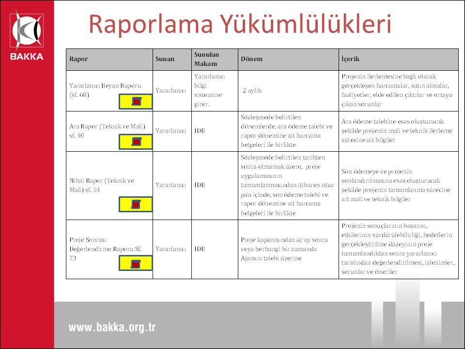 Raporlama Yükümlülükleri