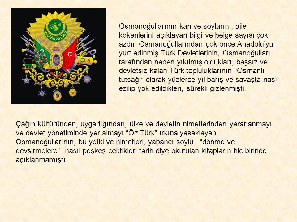 Osmanoğullarının kan ve soylarını, aile kökenlerini açıklayan bilgi ve belge sayısı çok azdır. Osmanoğullarından çok önce Anadolu'yu yurt edinmiş Türk