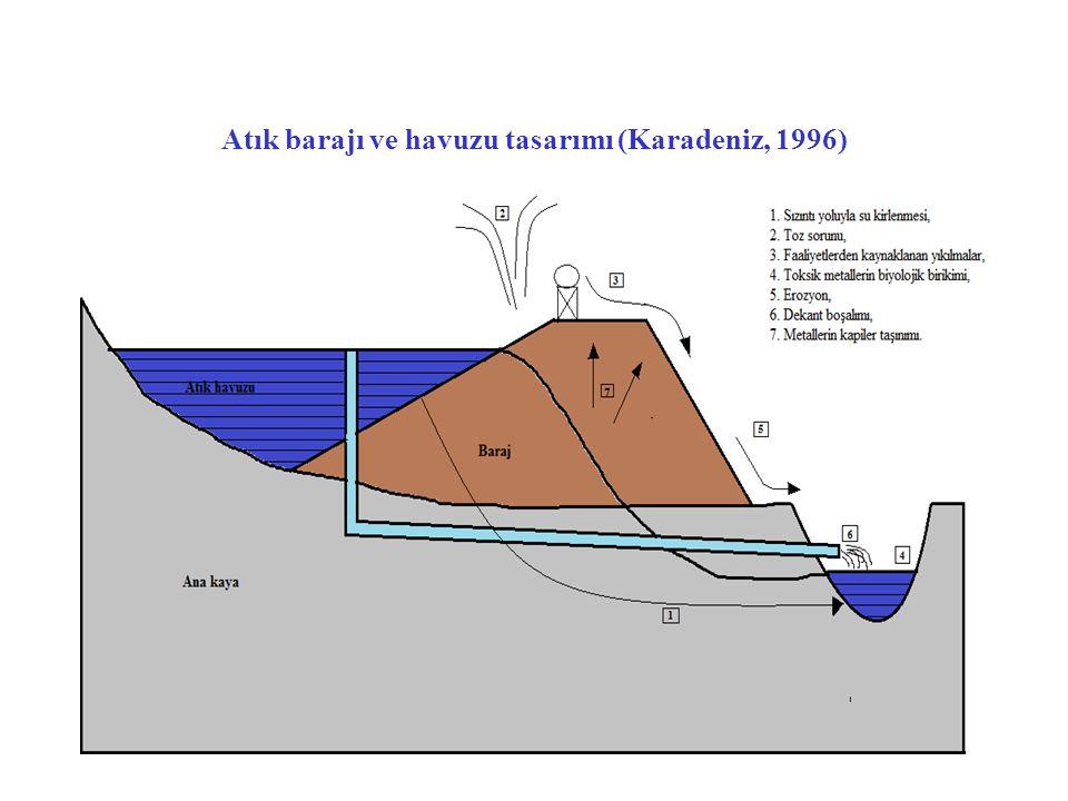 Bir atık havuzu, Missori(ABD), www.altinmadencileri.org