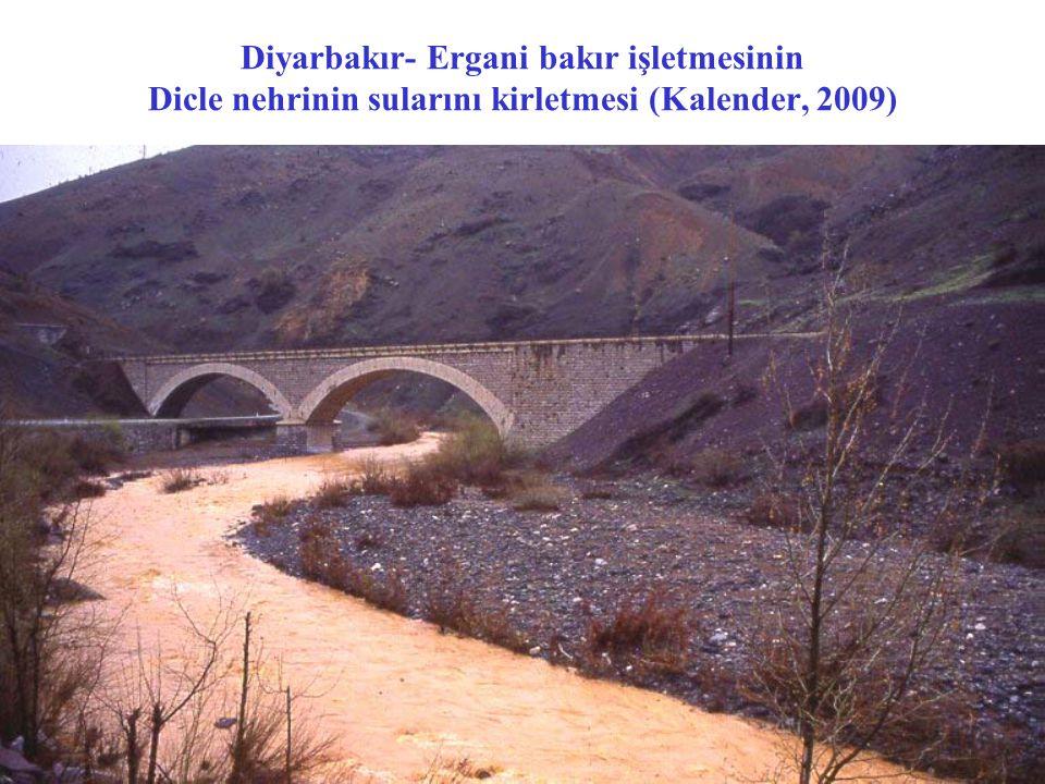 İzmir- Bergama Ovacık altın madeni açık ocak işletmesi (Dilek, 2009)