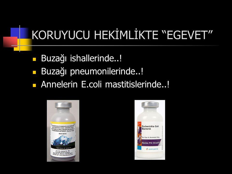 KORUYUCU HEKİMLİKTE EGEVET  Buzağı ishallerinde...