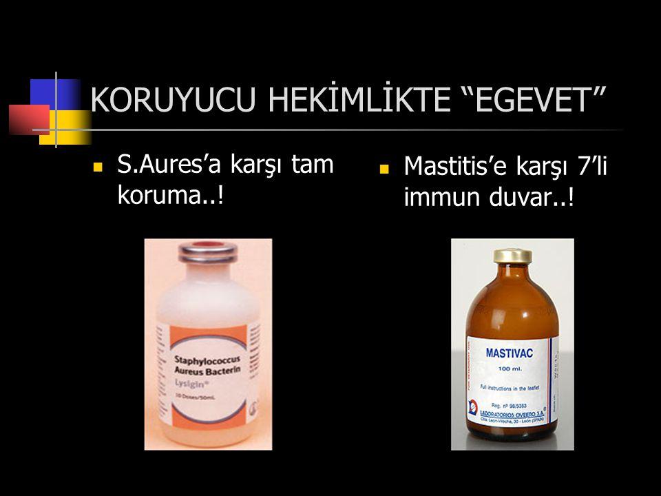 KORUYUCU HEKİMLİKTE EGEVET  S.Aures'a karşı tam koruma..!  Mastitis'e karşı 7'li immun duvar..!