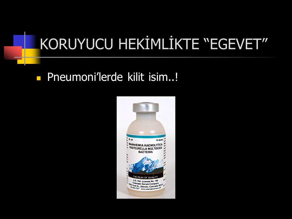 KORUYUCU HEKİMLİKTE EGEVET  Pneumoni'lerde kilit isim..!