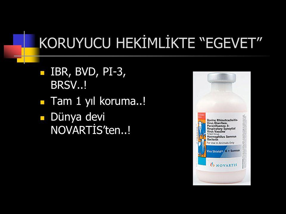 KORUYUCU HEKİMLİKTE EGEVET  IBR, BVD, PI-3, BRSV...