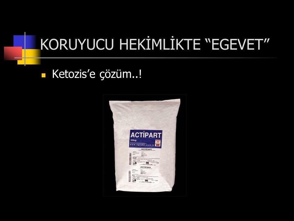 KORUYUCU HEKİMLİKTE EGEVET  Ketozis'e çözüm..!