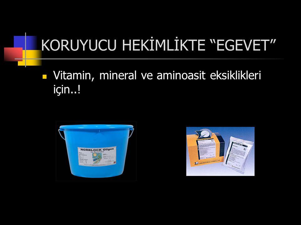 KORUYUCU HEKİMLİKTE EGEVET  Vitamin, mineral ve aminoasit eksiklikleri için..!