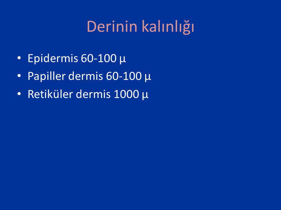 Ablatif lazerler CO2 • CO2 lazer 10 600 nm • Lazer uygulamalarında,1ms.