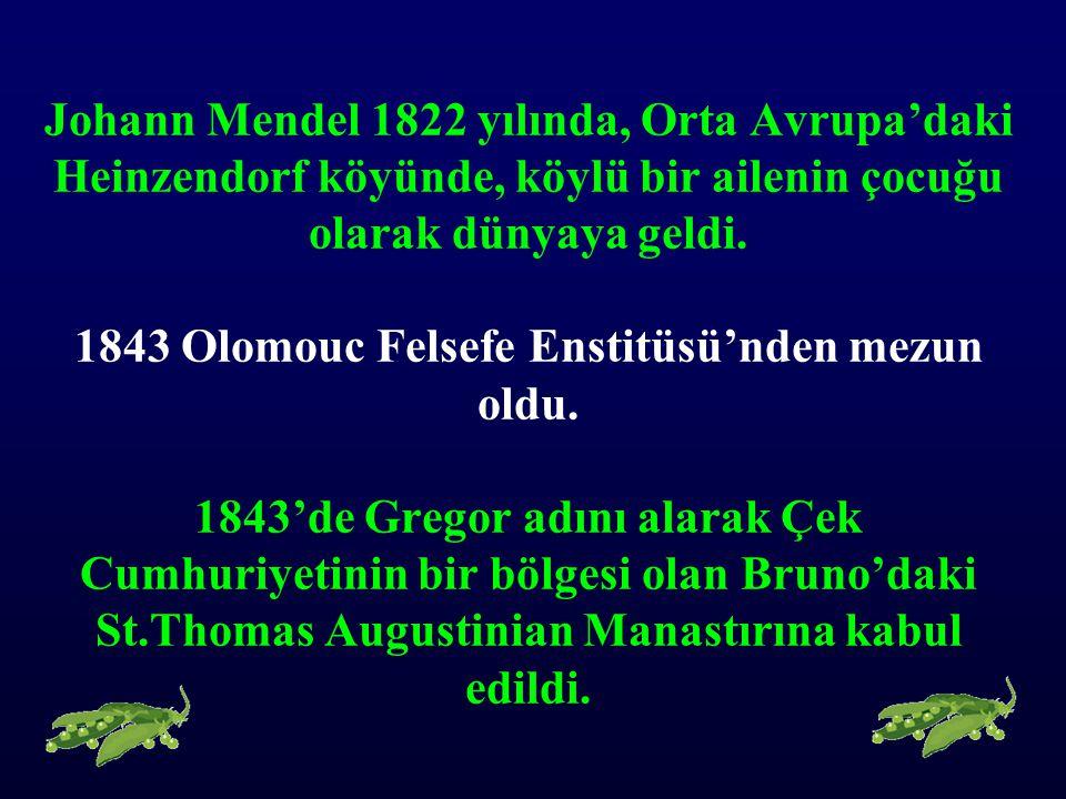 Johann Mendel 1822 yılında, Orta Avrupa'daki Heinzendorf köyünde, köylü bir ailenin çocuğu olarak dünyaya geldi. 1843 Olomouc Felsefe Enstitüsü'nden m
