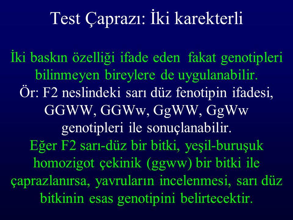 Test Çaprazı: İki karekterli İki baskın özelliği ifade eden fakat genotipleri bilinmeyen bireylere de uygulanabilir. Ör: F2 neslindeki sarı düz fenoti