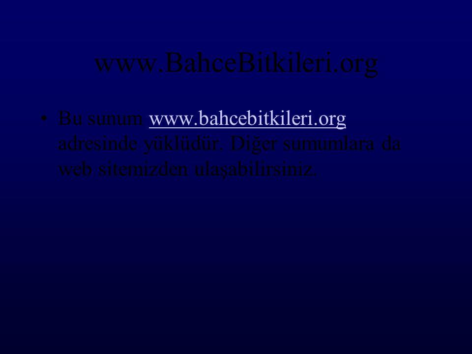 www.BahceBitkileri.org •Bu sunum www.bahcebitkileri.org adresinde yüklüdür. Diğer sumumlara da web sitemizden ulaşabilirsiniz.www.bahcebitkileri.org