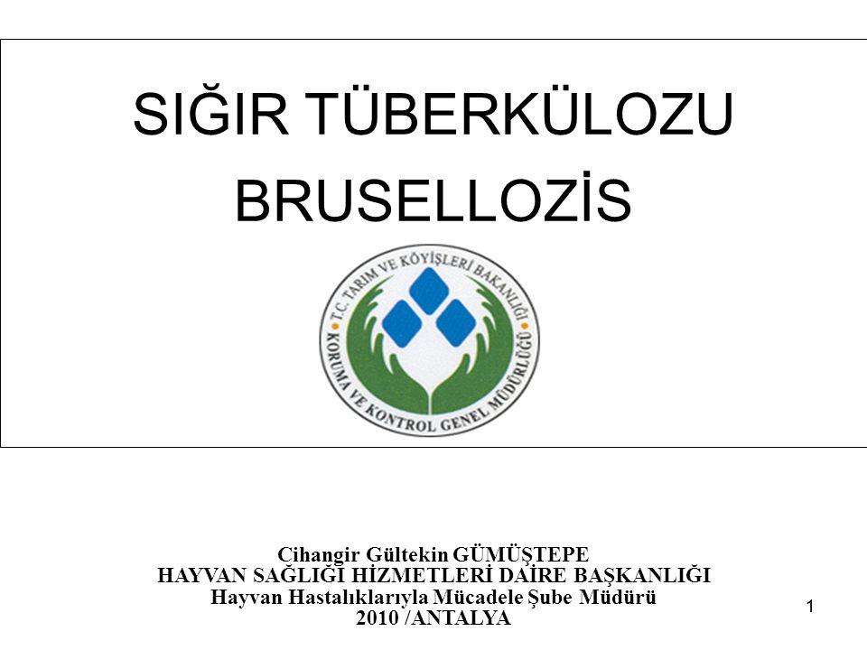 11 SIĞIR TÜBERKÜLOZU BRUSELLOZİS Cihangir Gültekin GÜMÜŞTEPE HAYVAN SAĞLIĞI HİZMETLERİ DAİRE BAŞKANLIĞI Hayvan Hastalıklarıyla Mücadele Şube Müdürü 20