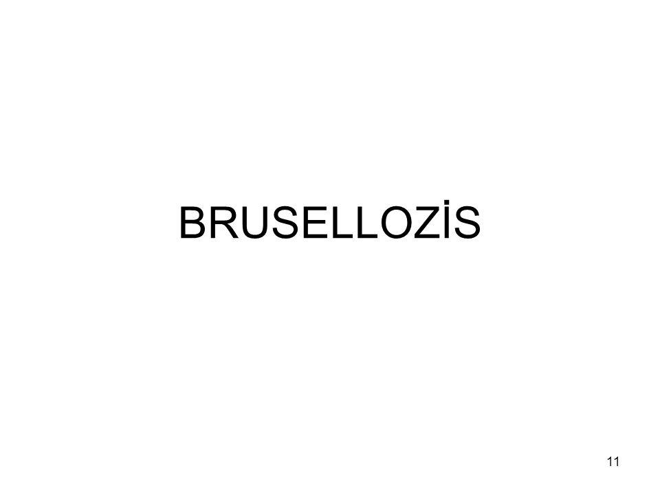 11 BRUSELLOZİS