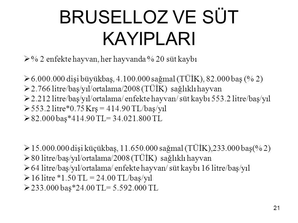 BRUSELLOZ VE SÜT KAYIPLARI  % 2 enfekte hayvan, her hayvanda % 20 süt kaybı  6.000.000 dişi büyükbaş, 4.100.000 sağmal (TÜİK), 82.000 baş (% 2)  2.