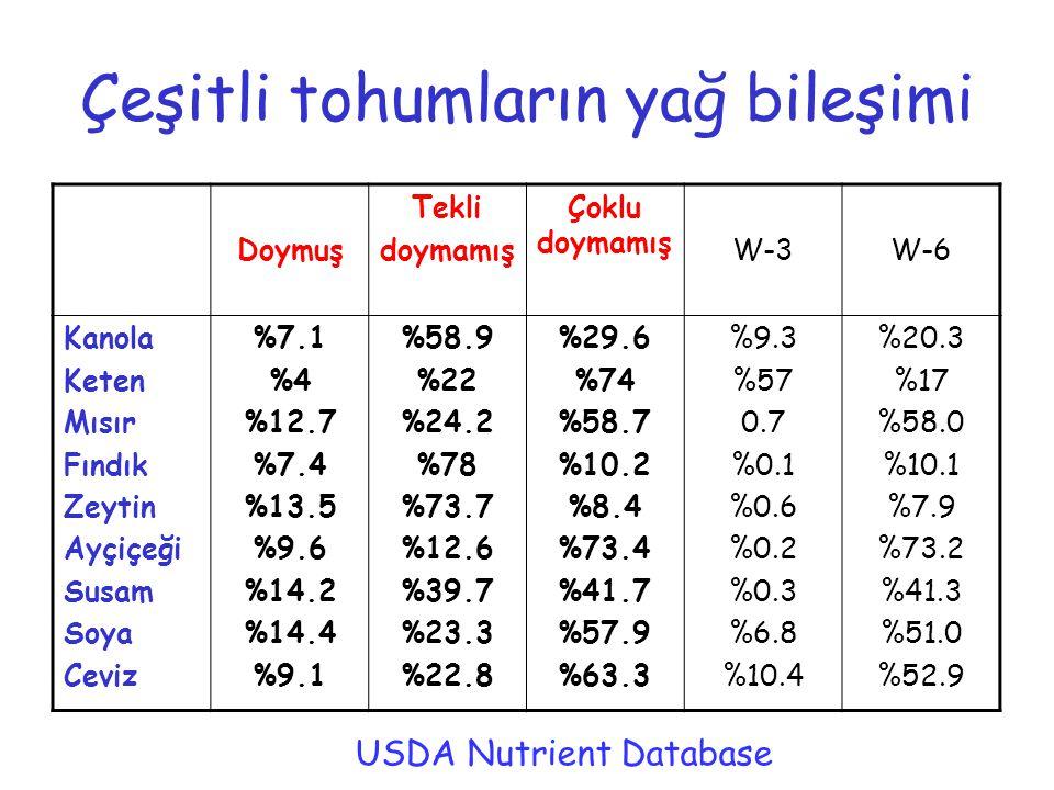 Çeşitli tohumların yağ bileşimi Doymuş Tekli doymamış Çoklu doymamış W-3W-6 Kanola Keten Mısır Fındık Zeytin Ayçiçeği Susam Soya Ceviz %7.1 %4 %12.7 %7.4 %13.5 %9.6 %14.2 %14.4 %9.1 %58.9 %22 %24.2 %78 %73.7 %12.6 %39.7 %23.3 %22.8 %29.6 %74 %58.7 %10.2 %8.4 %73.4 %41.7 %57.9 %63.3 %9.3 %57 0.7 %0.1 %0.6 %0.2 %0.3 %6.8 %10.4 %20.3 %17 %58.0 %10.1 %7.9 %73.2 %41.3 %51.0 %52.9 USDA Nutrient Database