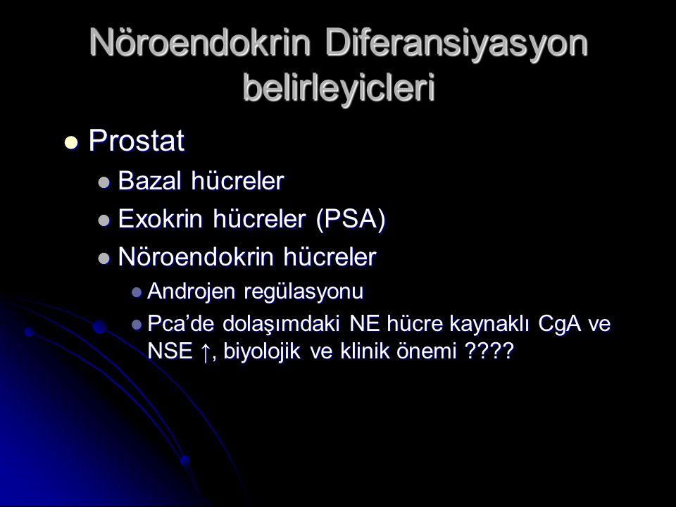 Nöroendokrin Diferansiyasyon belirleyicleri  Prostat  Bazal hücreler  Exokrin hücreler (PSA)  Nöroendokrin hücreler  Androjen regülasyonu  Pca'd