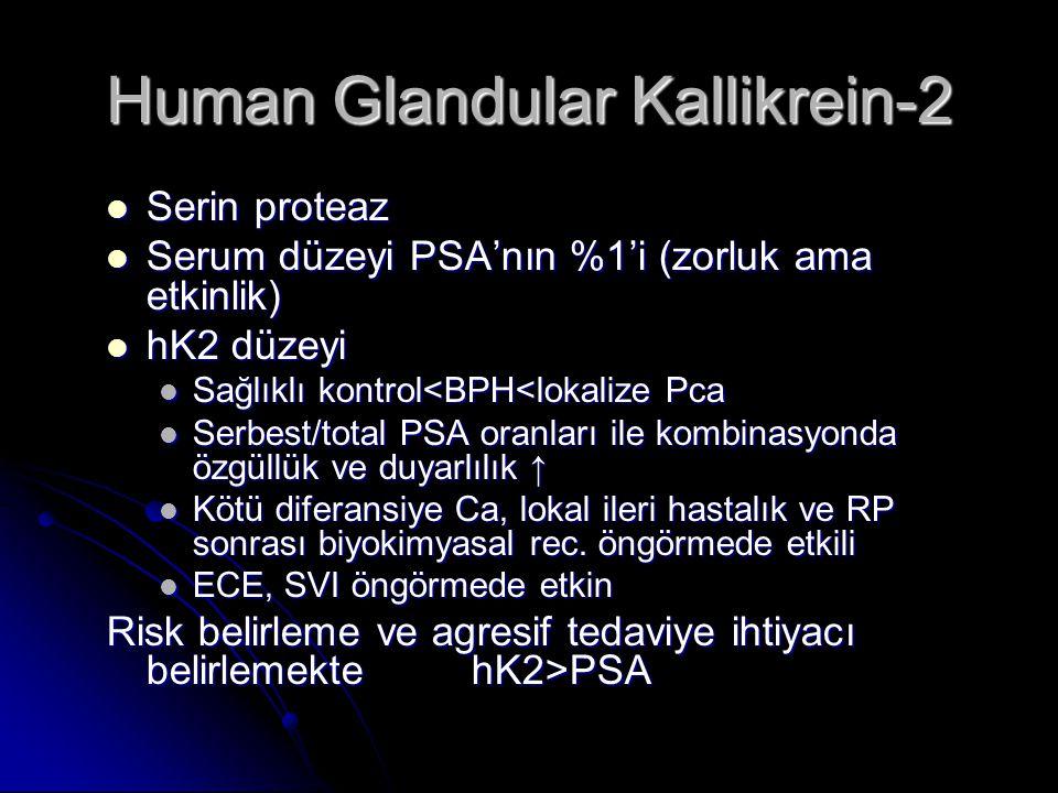 Human Glandular Kallikrein-2  Serin proteaz  Serum düzeyi PSA'nın %1'i (zorluk ama etkinlik)  hK2 düzeyi  Sağlıklı kontrol<BPH<lokalize Pca  Serb