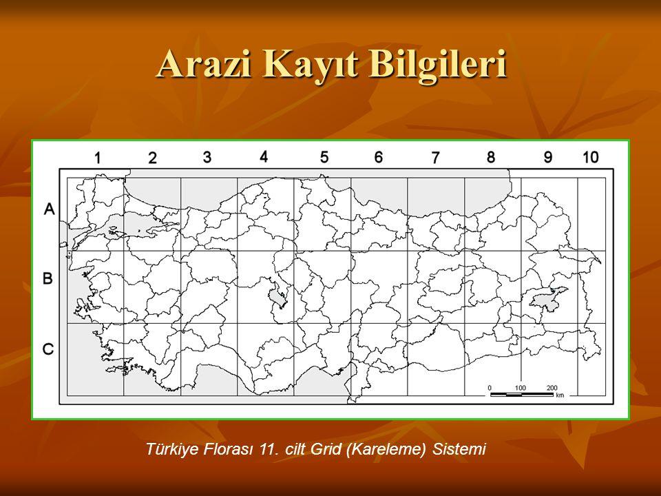 Türkiye Florası 11. cilt Grid (Kareleme) Sistemi