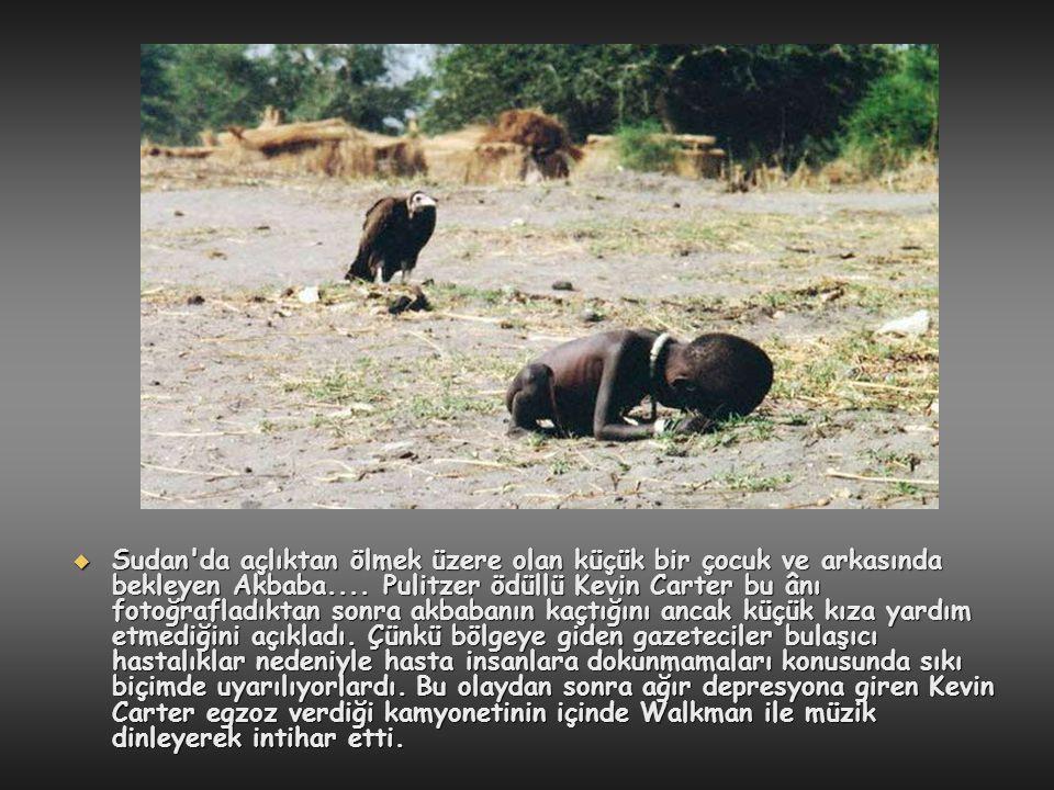  Sudan'da açlıktan ölmek üzere olan küçük bir çocuk ve arkasında bekleyen Akbaba.... Pulitzer ödüllü Kevin Carter bu ânı fotoğrafladıktan sonra akbab