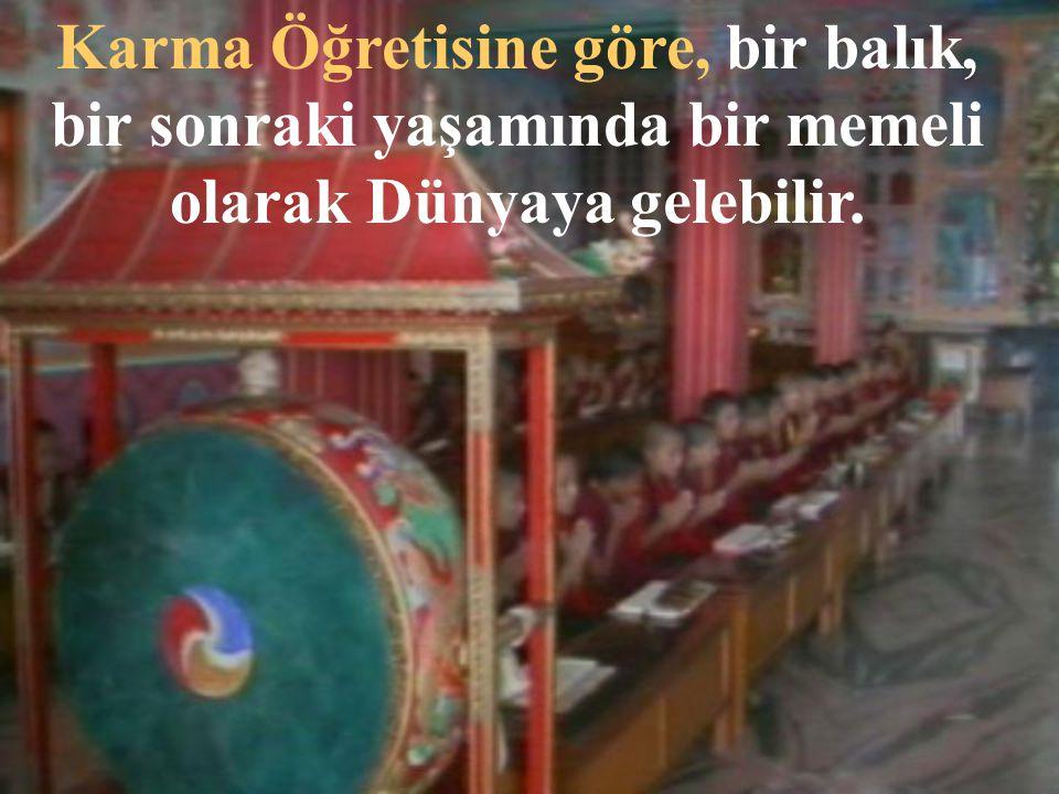 Budistler, tabiatta sürekli bir dönüşüm olduğuna inanırlar.