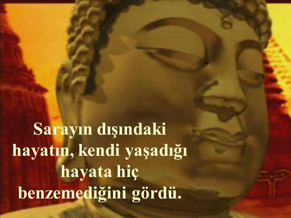 Buda, uzun süre gördüğü bu gibi gerçeklerle saray yaşamını karşılaştırdı.