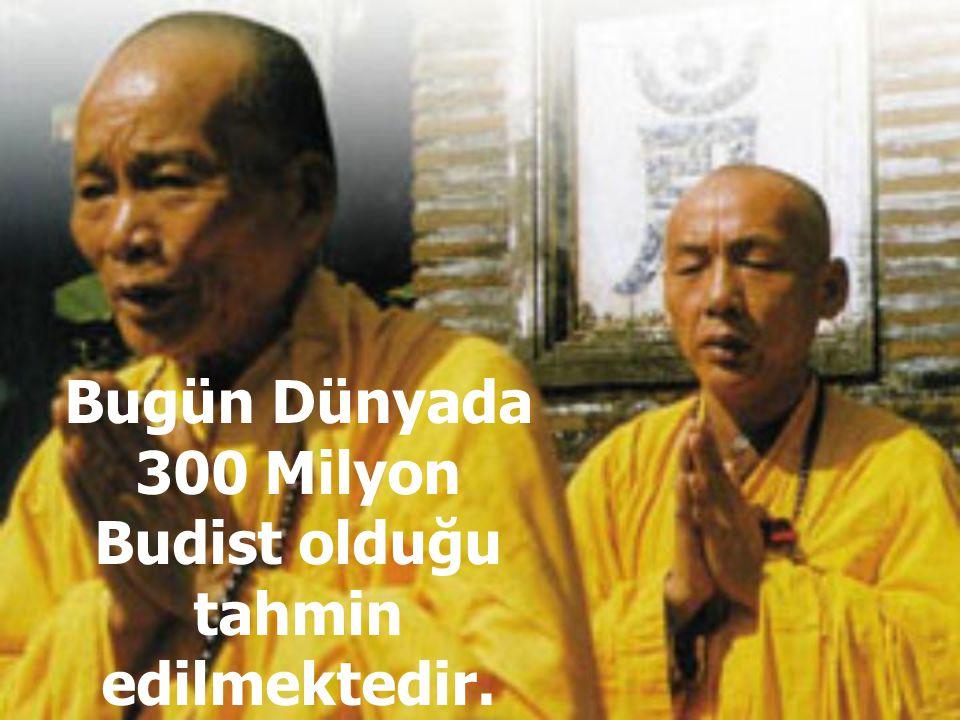 Ya da bir insan, bir böcek olarak doğabilir. Böylece Budizm türler arasında geçişlilik öngörür.