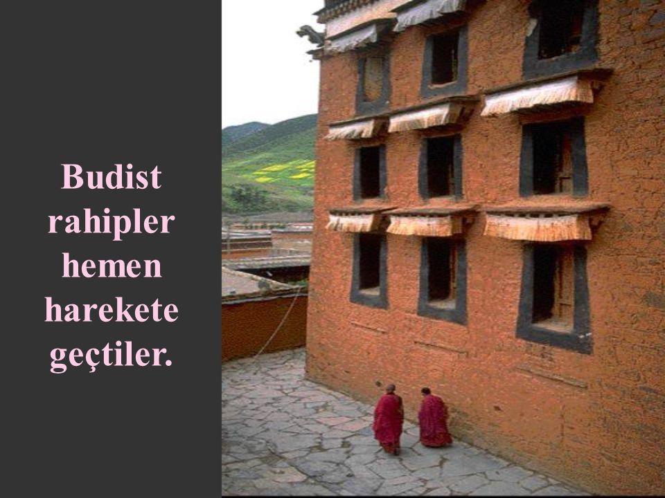 Buda'nın putlaştırılması Ölümünden hemen sonra başladı.
