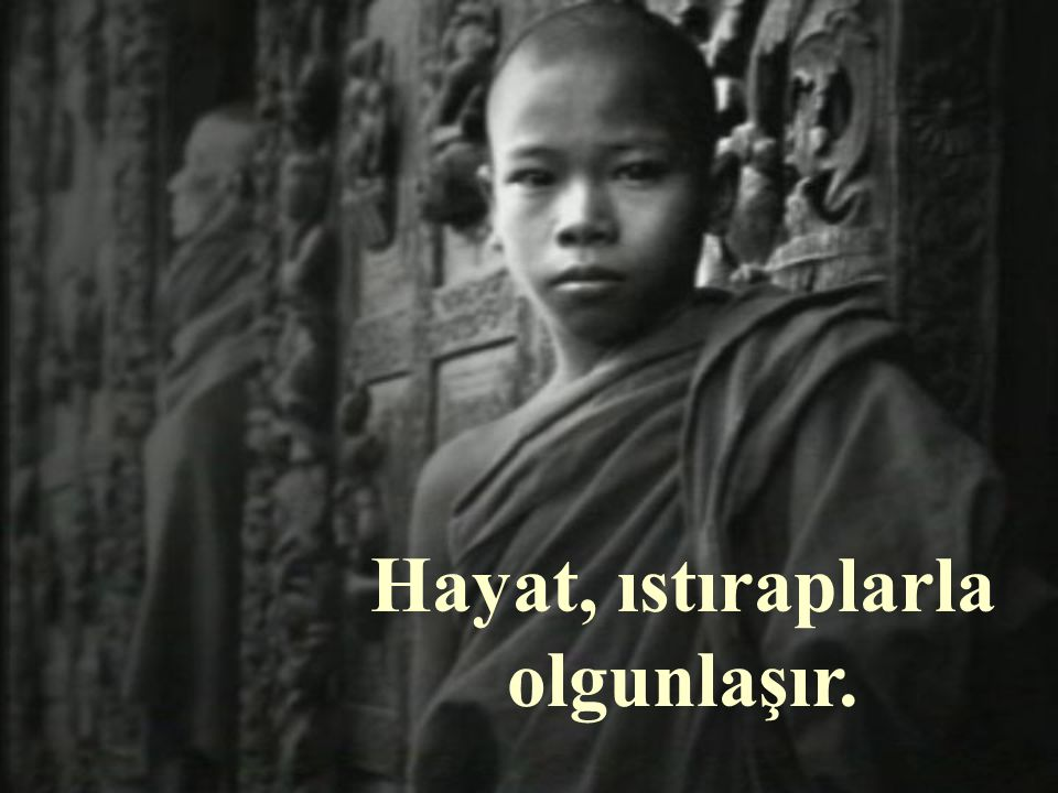 Budist rahiplere göre güzel yiyecekler ve temiz giyecekler ve rahat olmak yasaktır.