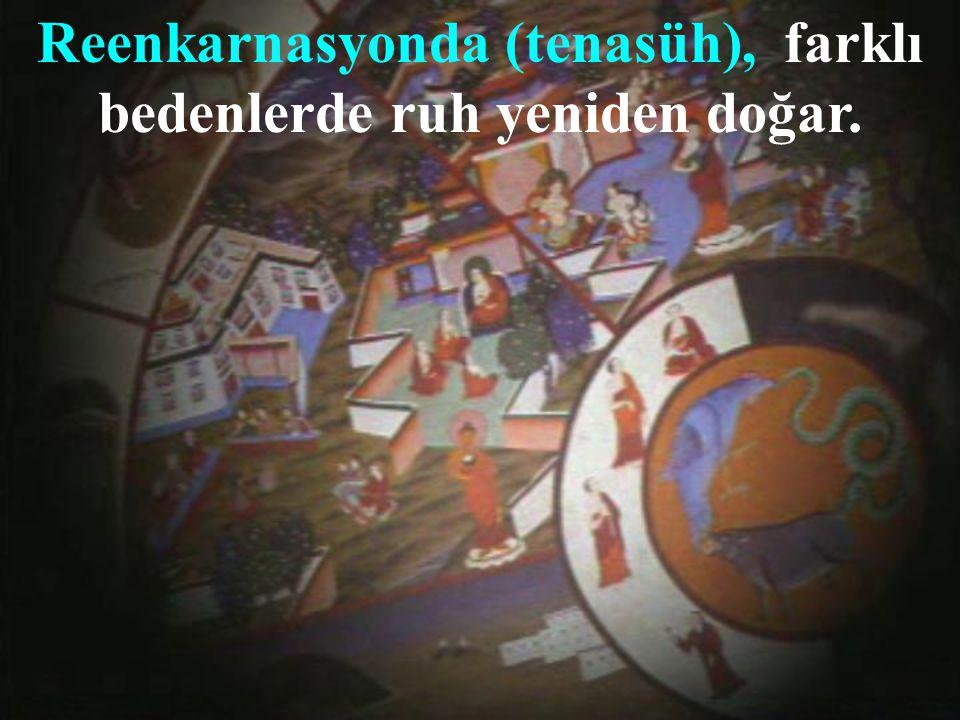 Budizm'de Reenkarnasyon ve Karma inancı vardır.