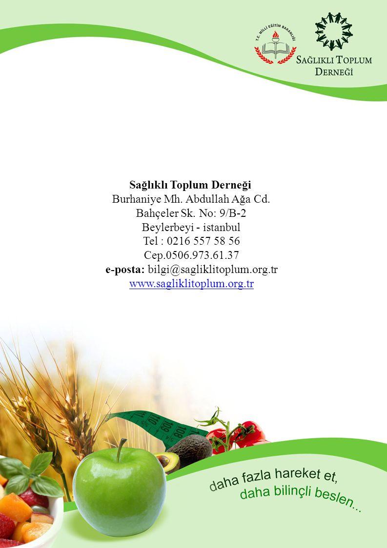 Sağlıklı Toplum Derneği Burhaniye Mh. Abdullah Ağa Cd.