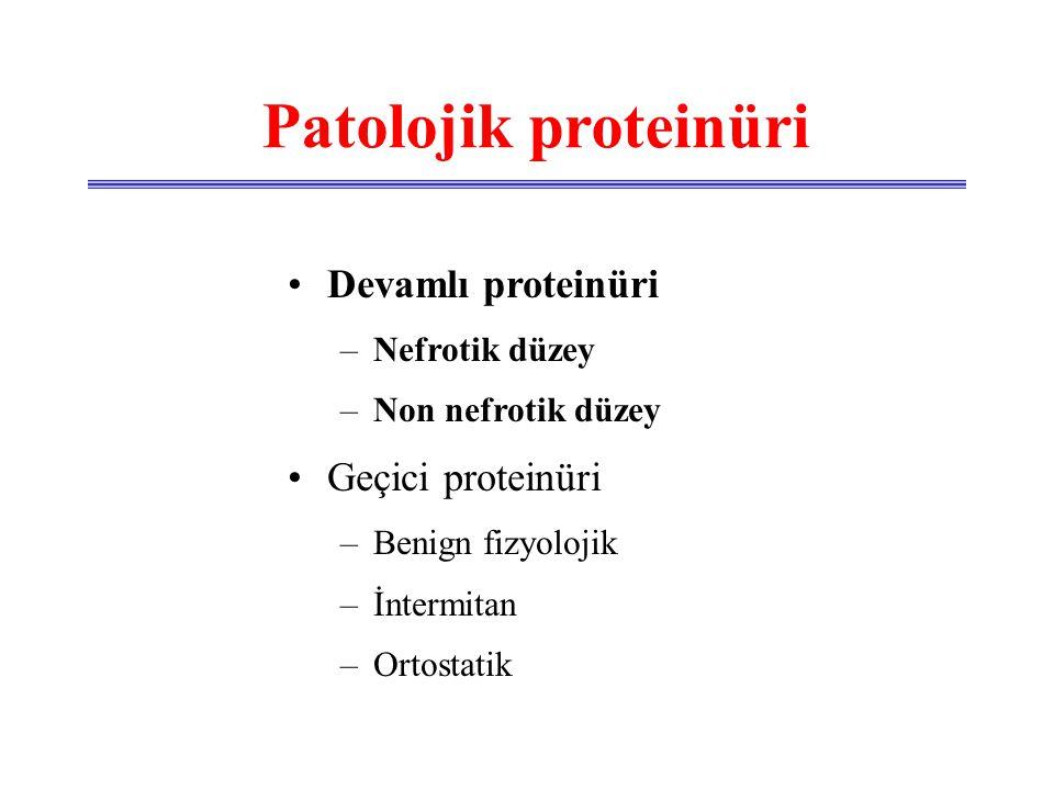 Patolojik proteinüri •Glomeruler •Tubuler •Taşma •Benign