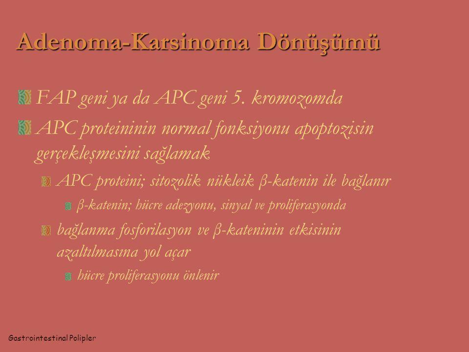 FAP geni ya da APC geni 5. kromozomda APC proteininin normal fonksiyonu apoptozisin gerçekleşmesini sağlamak APC proteini; sitozolik nükleik β-katenin