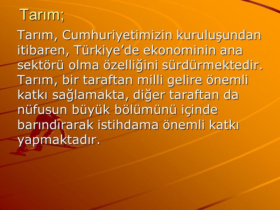Tarım; Tarım; Tarım, Cumhuriyetimizin kuruluşundan itibaren, Türkiye'de ekonominin ana sektörü olma özelliğini sürdürmektedir. Tarım, bir taraftan mil