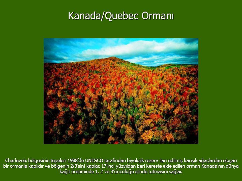 Kanada/Quebec Ormanı Charlevoix bölgesinin tepeleri 1988'de UNESCO tarafından biyolojik rezerv ilan edilmiş karışık ağaçlardan oluşan bir ormanla kaplıdır ve bölgenin 2/3'sini kaplar.