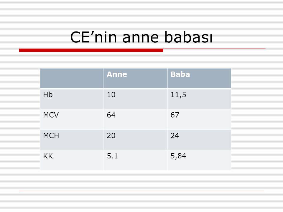CE'nin anne babası AnneBaba Hb1011,5 MCV6467 MCH2024 KK5.15,84
