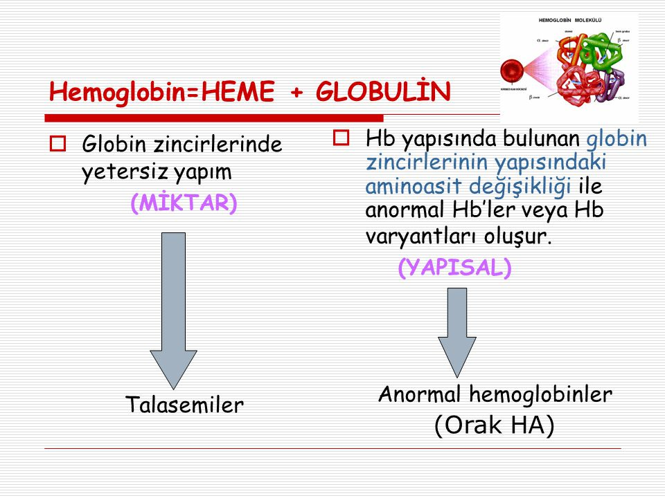  Globin zincirlerinde yetersiz yapım (MİKTAR) Talasemiler  Hb yapısında bulunan globin zincirlerinin yapısındaki aminoasit değişikliği ile anormal Hb'ler veya Hb varyantları oluşur.