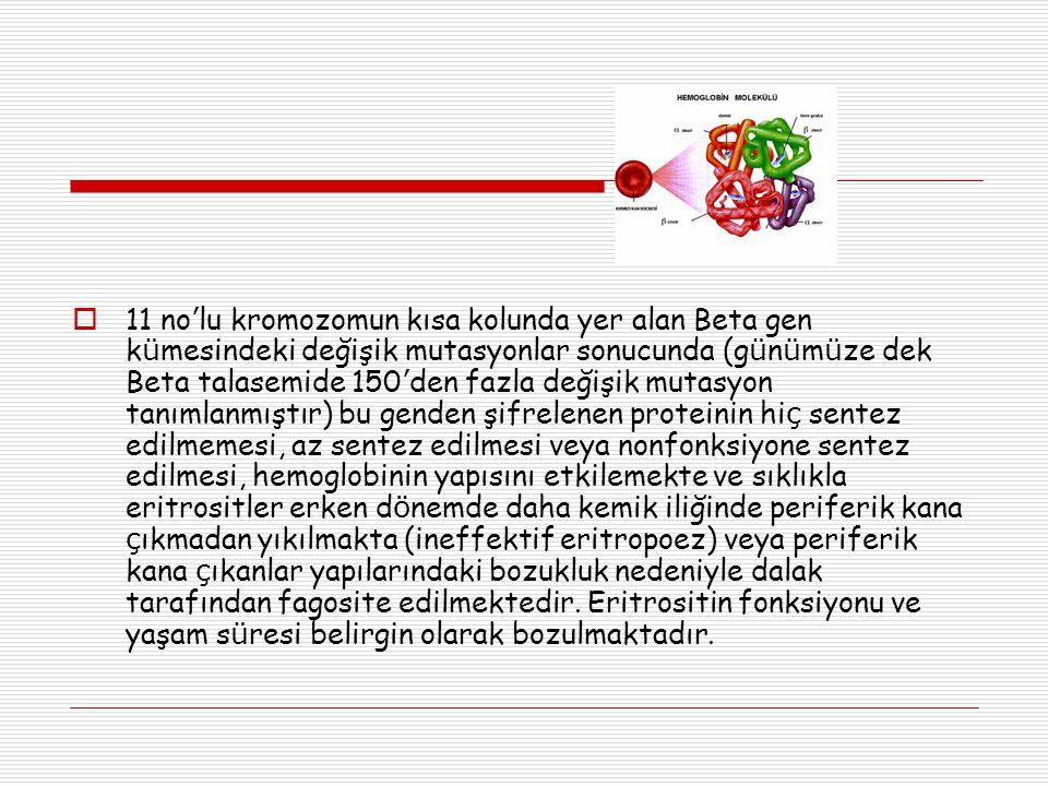  11 no ' lu kromozomun kısa kolunda yer alan Beta gen k ü mesindeki değişik mutasyonlar sonucunda (g ü n ü m ü ze dek Beta talasemide 150 ' den fazla değişik mutasyon tanımlanmıştır) bu genden şifrelenen proteinin hi ç sentez edilmemesi, az sentez edilmesi veya nonfonksiyone sentez edilmesi, hemoglobinin yapısını etkilemekte ve sıklıkla eritrositler erken d ö nemde daha kemik iliğinde periferik kana ç ıkmadan yıkılmakta (ineffektif eritropoez) veya periferik kana ç ıkanlar yapılarındaki bozukluk nedeniyle dalak tarafından fagosite edilmektedir.