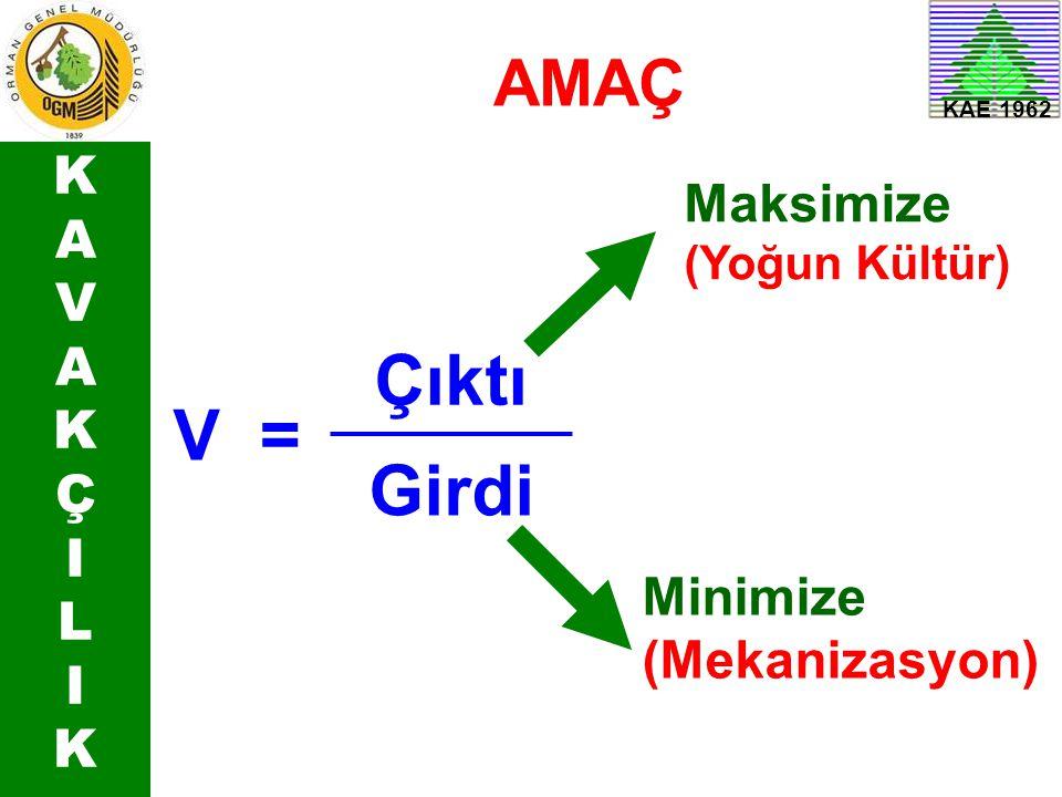 KAVAKÇILIKKAVAKÇILIK V= Çıktı Girdi Minimize (Mekanizasyon) Maksimize (Yoğun Kültür) AMAÇ KAE 1962