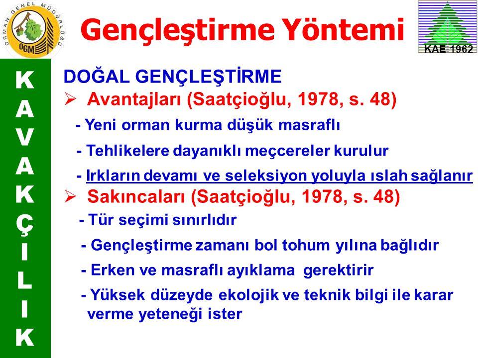KAE 1962 Gençleştirme Yöntemi DOĞAL GENÇLEŞTİRME  Avantajları (Saatçioğlu, 1978, s. 48) - Yeni orman kurma düşük masraflı - Tehlikelere dayanıklı meç