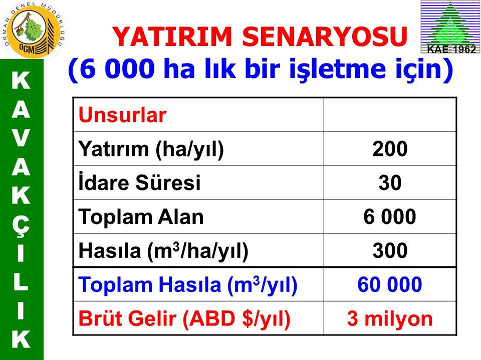 KAE 1962 YATIRIM SENARYOSU (6 000 ha lık bir işletme için) Unsurlar Yatırım (ha/yıl)200 İdare Süresi30 Toplam Alan6 000 Hasıla (m 3 /ha/yıl)300 Toplam