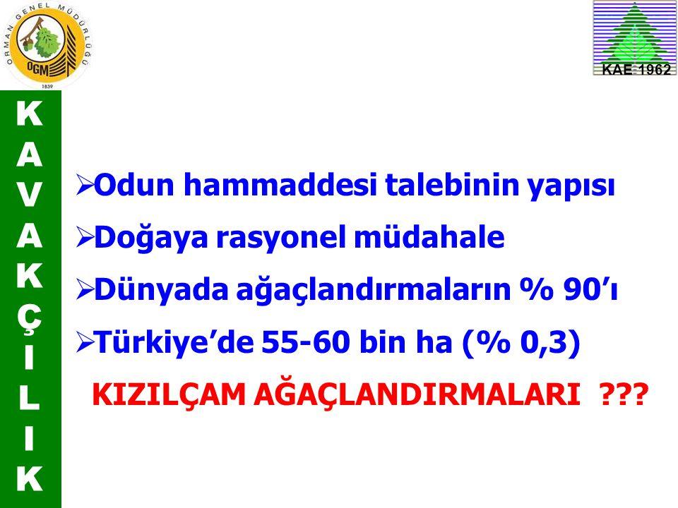 KAVAKÇILIKKAVAKÇILIK KAE 1962  Odun hammaddesi talebinin yapısı  Doğaya rasyonel müdahale  Dünyada ağaçlandırmaların % 90'ı  Türkiye'de 55-60 bin