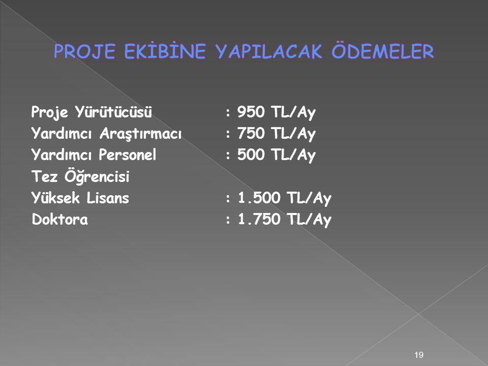 Proje Yürütücüsü: 950 TL/Ay Yardımcı Araştırmacı: 750 TL/Ay Yardımcı Personel: 500 TL/Ay Tez Öğrencisi Yüksek Lisans: 1.500 TL/Ay Doktora : 1.750 TL/Ay 19