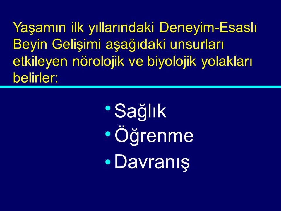 03-065 DAVRANIŞ