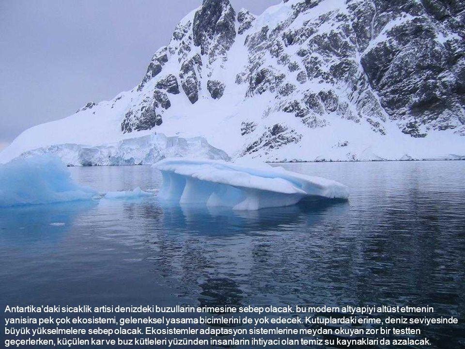 Antartika'daki sicaklik artisi denizdeki buzullarin erimesine sebep olacak. bu modern altyapiyi altüst etmenin yanisira pek çok ekosistemi, geleneksel