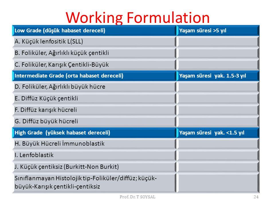 Prof. Dr. T SOYSAL24 Working Formulation Low Grade (düşük habaset dereceli)Yaşam süresi >5 yıl A. Küçük lenfositik L(SLL) B. Foliküler, Ağırlıklı küçü