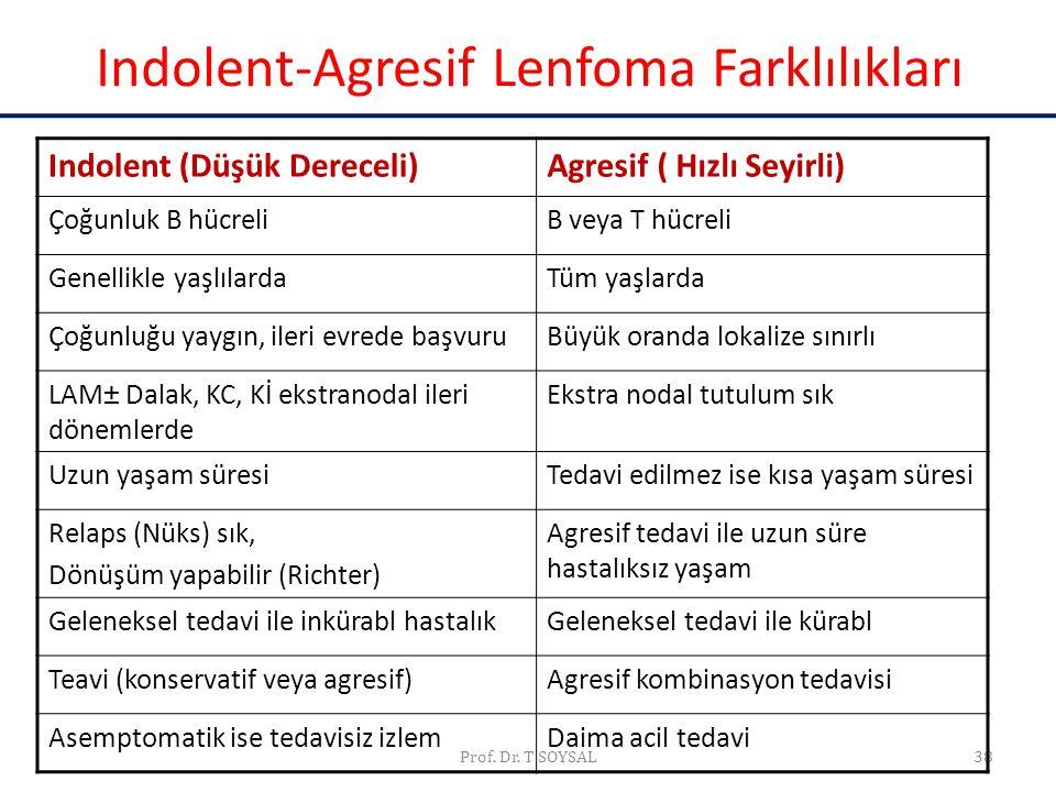 Prof. Dr. T SOYSAL38 Indolent-Agresif Lenfoma Farklılıkları Indolent (Düşük Dereceli)Agresif ( Hızlı Seyirli) Çoğunluk B hücreliB veya T hücreli Genel