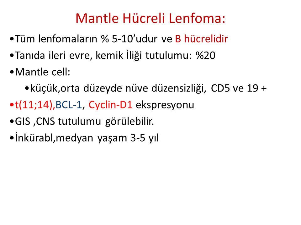 •Tüm lenfomaların % 5-10'udur ve B hücrelidir •Tanıda ileri evre, kemik İliği tutulumu: %20 •Mantle cell: •küçük,orta düzeyde nüve düzensizliği, CD5 v