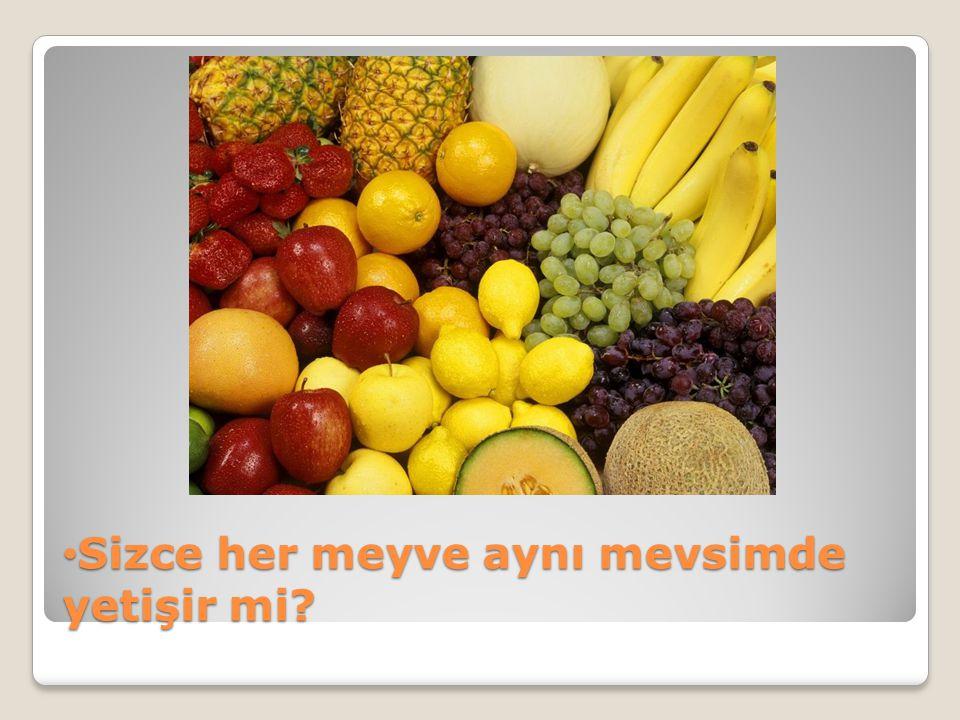 • Sizce her meyve aynı mevsimde yetişir mi?
