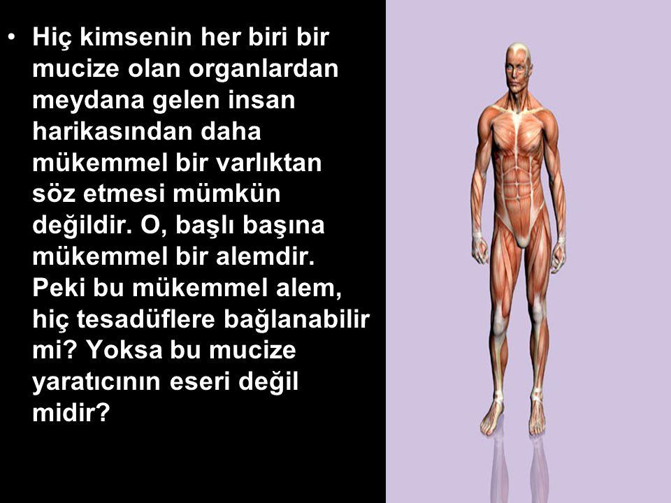 •Hiç kimsenin her biri bir mucize olan organlardan meydana gelen insan harikasından daha mükemmel bir varlıktan söz etmesi mümkün değildir.